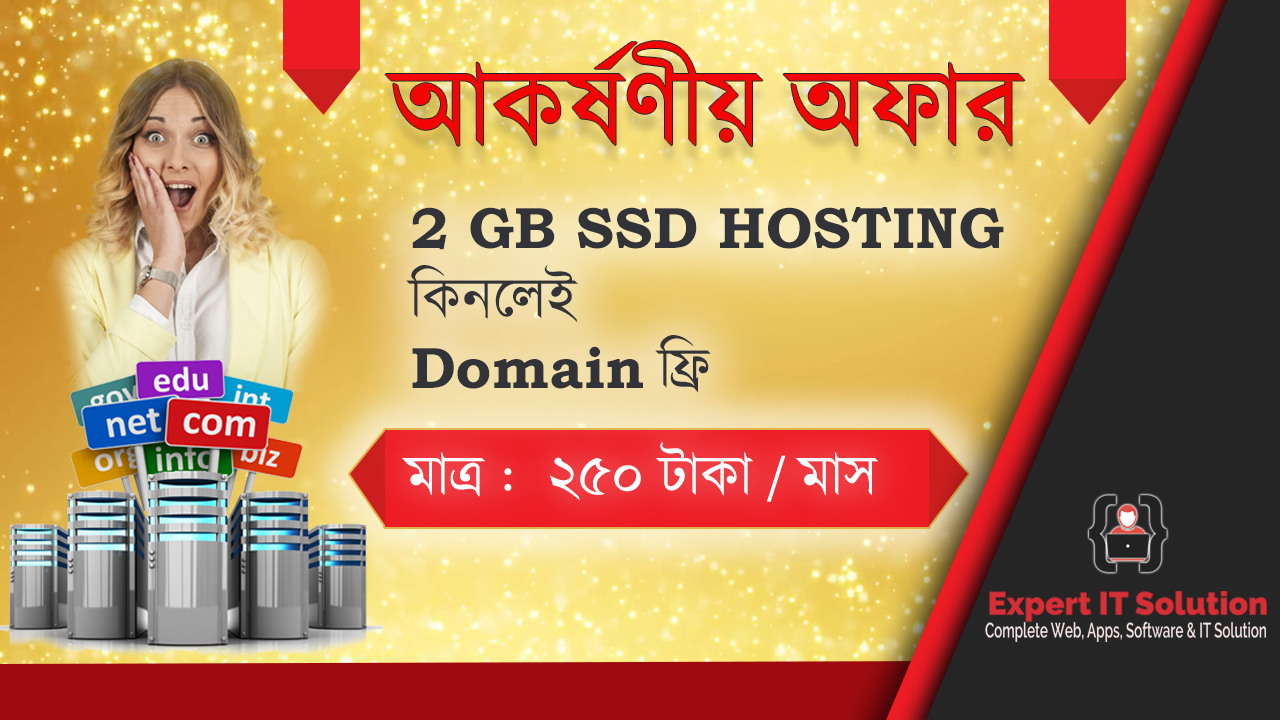 2 GB SSD Hosting Only 250 TK/Month With Free Domain
